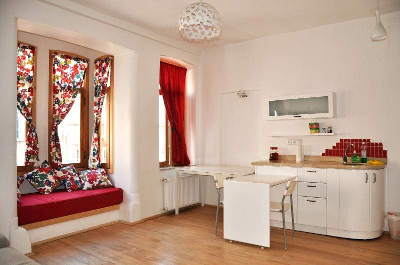 A lovely, Modern, 1bd Apt in Centeral Neighborhood, holiday rental in Istanbul