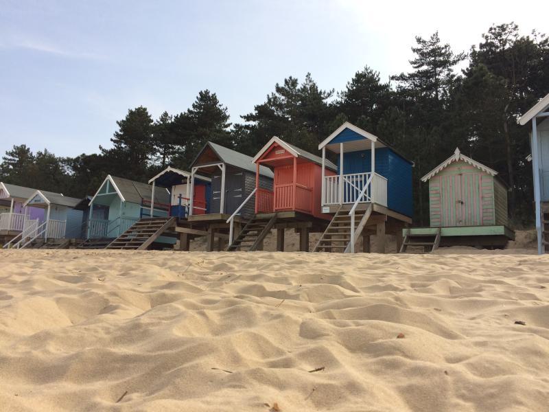 Beach huts and pine fringed beach - wonderful Wells...