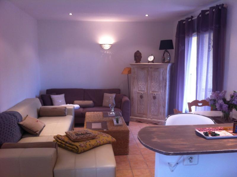 Jolie maison rez de jardin solarium climatisee, holiday rental in Saint Saturnin les Avignon