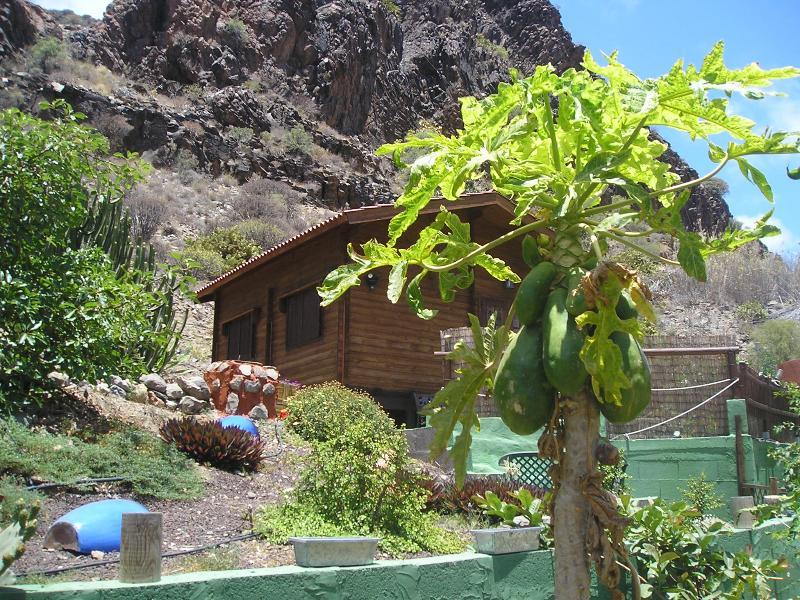 marevinarural2, vacation rental in Maspalomas