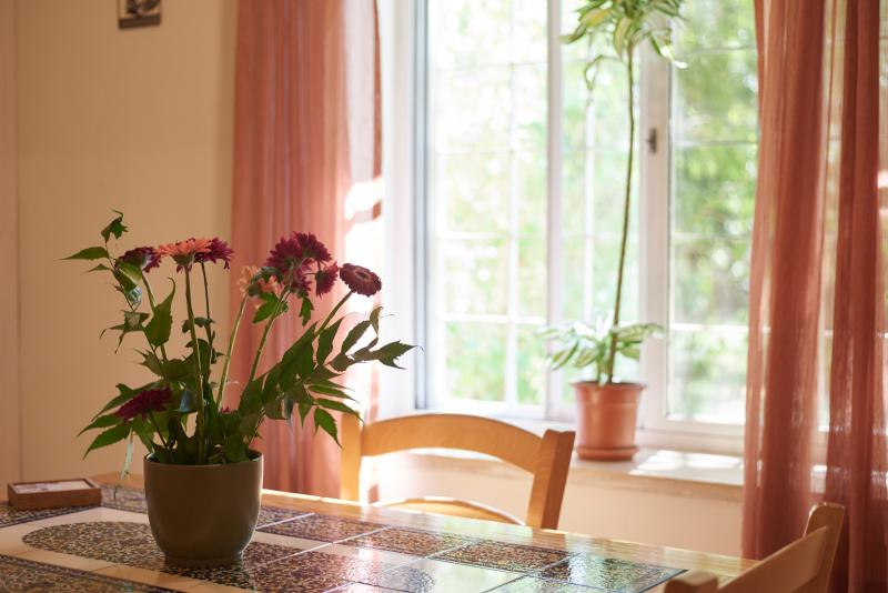The dining table and the Garden View