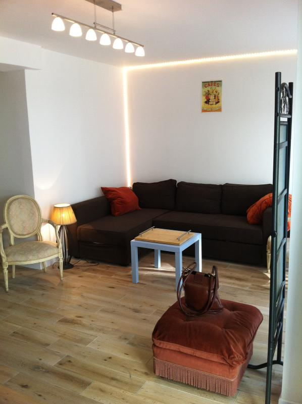 Charming flat in paris close to Père Lachaise, holiday rental in Les Lilas