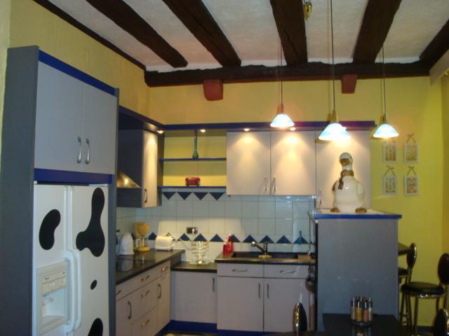 Cuisine équipée : frigo Américain, plaque induction, hotte, lave vaisselle, four, micro-onde...