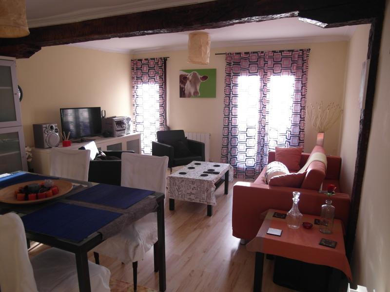 louer appart Bilbao Bel appartement