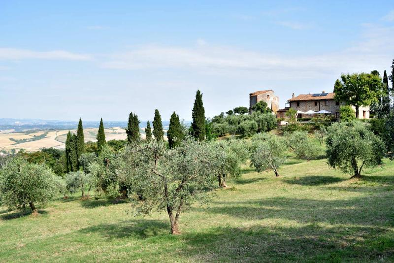 An Estate with a view - Monteluco, vakantiewoning in Montaione