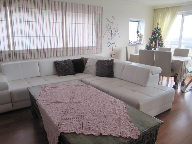 Dream Apart. for your CAR (cheap parking in center of Amsterdam), vacation rental in Hoofddorp