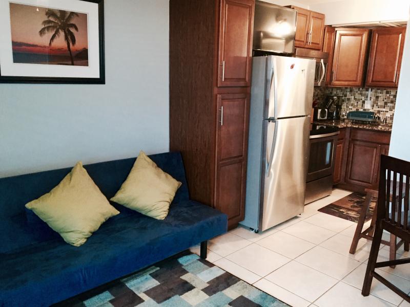 unit b- new kitchen,  granite  counter top and  appliances. Plus a Futon