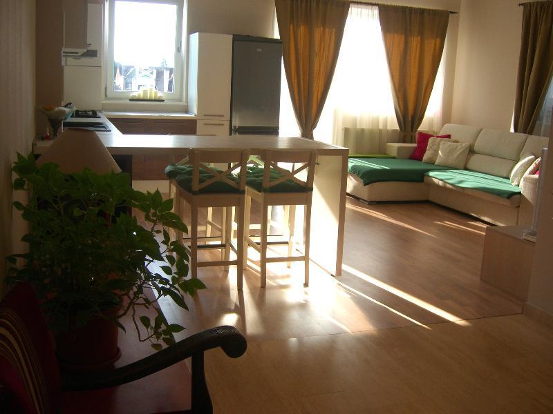 Bonjour Luxury 3 rooms, holiday rental in Sanpetru