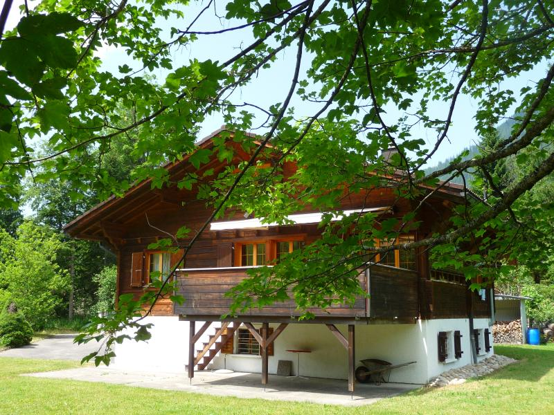 Lovely Chalet in stunning location – semesterbostad i Lucerne