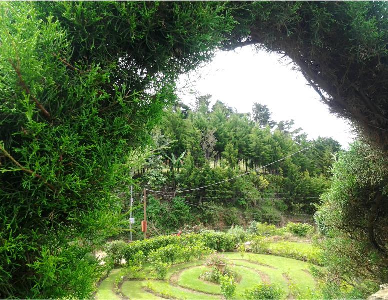 Beautiful gardens, flowers, birds and hummingbirds.