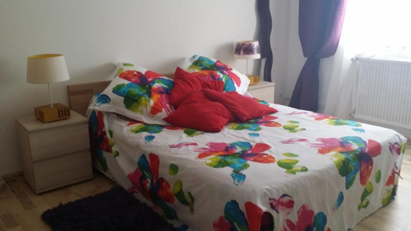 centre ville F2, vacation rental in Loire