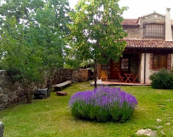 Jardín y porche