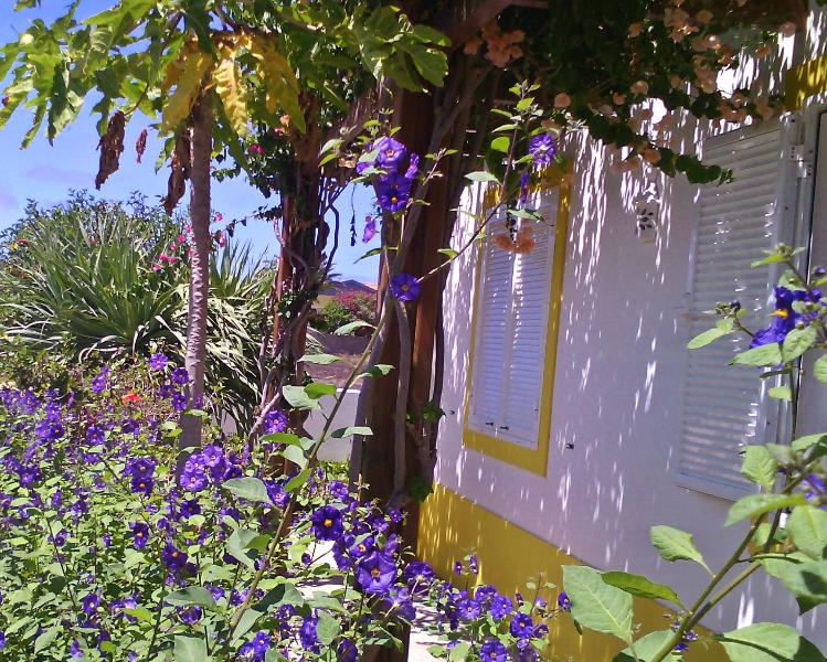 Casa De Férias Na Ilha Dourada, location de vacances à L'île de Porto Santo