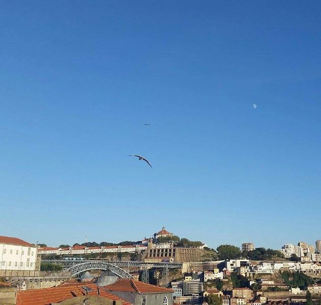 Amigos do Douro