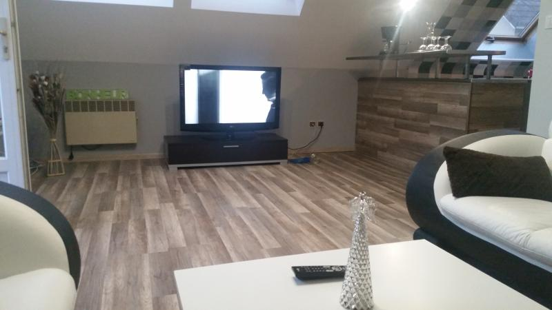 appartement a 10 min du centre de dijon, vacation rental in Chenove