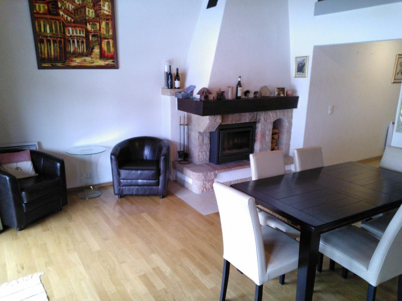 Charmant duplex, vacation rental in Chateau-d'Oex