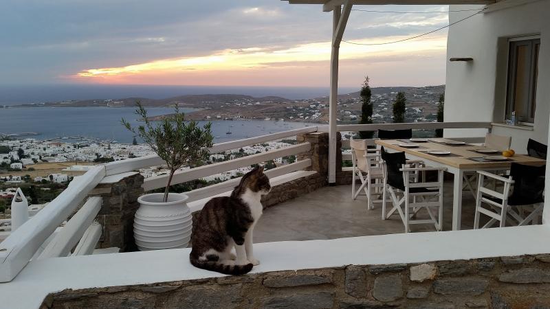 Parikia Paros seaview private Villa, holiday rental in Agios Charalampos