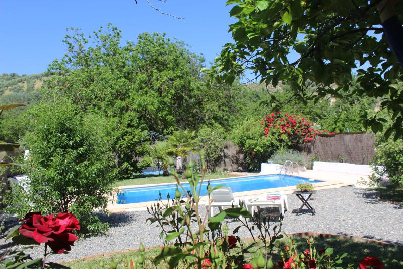 Casa La Nuez B&B Covid-19 Prepared, free WiFi, private pool, garden, holiday rental in Martos