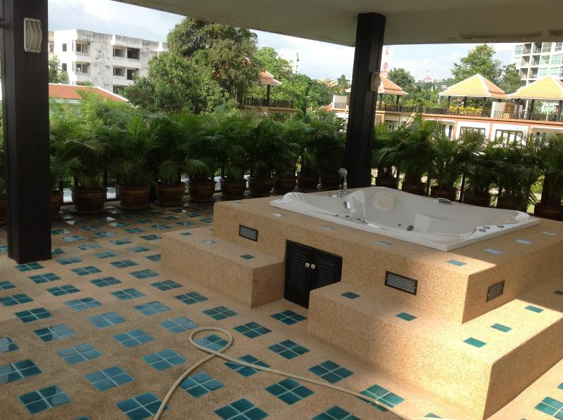 Jacuzzi with palm surround.....