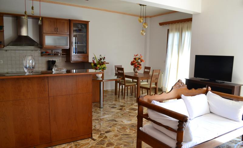 Live The Dream - Luxury spacious apartment, holiday rental in Koronos