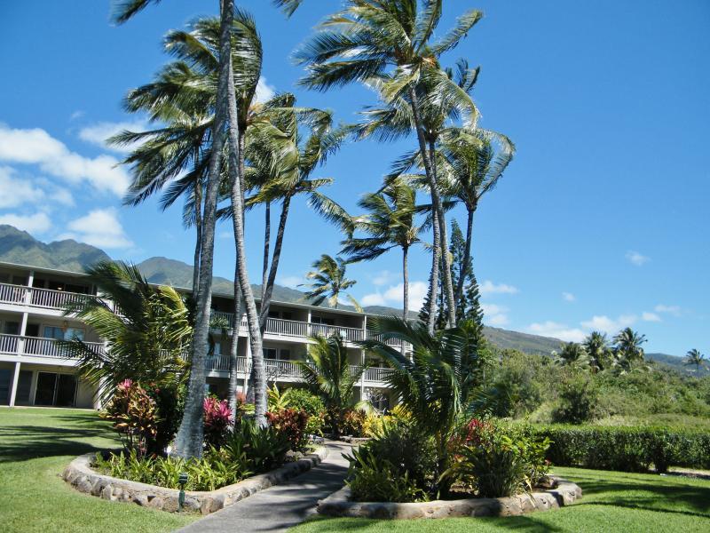 Beautiful Wavecrest Resort