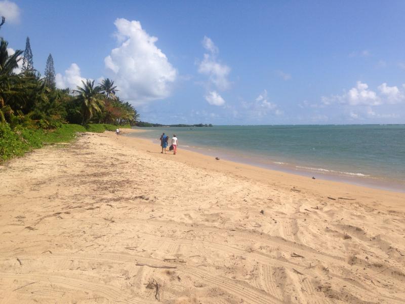 18 Mile Beach Eastend