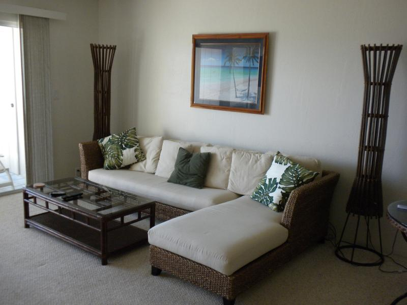 Comfortable Island Style Living Area with lounging couch