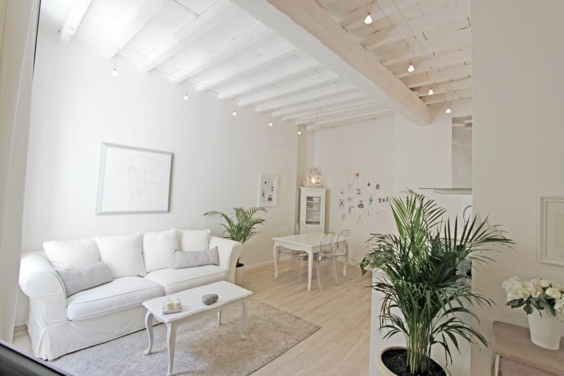 Côté XVIII°, vacation rental in Arles