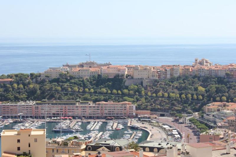 View on Monaco Port