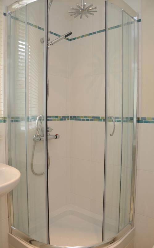Downstairs shower room and utility room - toilet and hand basin