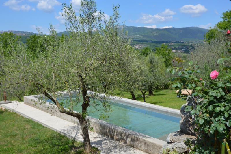 Il Melograno Aia le Monache, holiday rental in Veroli