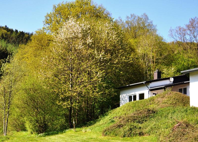 Eifel Landhaus Seeblick / Lake View Country House, holiday rental in Malberg