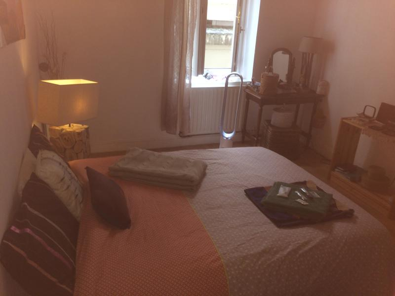 Chambre à louer/ private room to rent : LYON CONFLUENCE (COLOCATION/FLATSHARING), holiday rental in Montagny