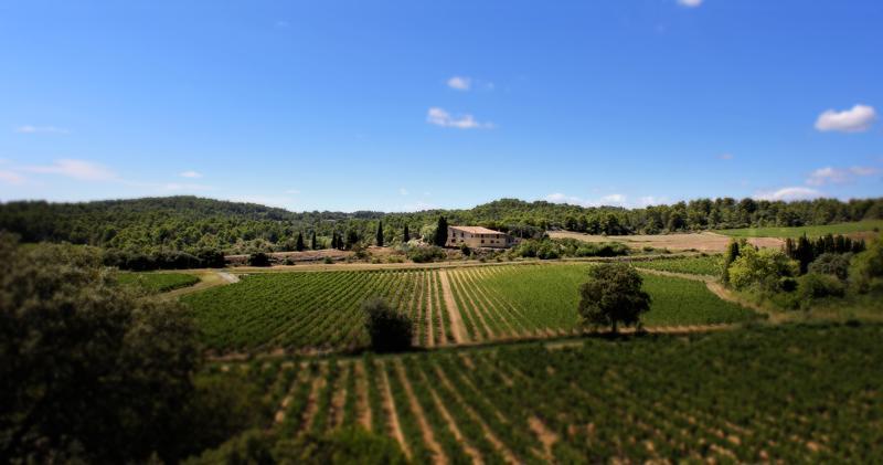 Domaine de Palatz from a distance