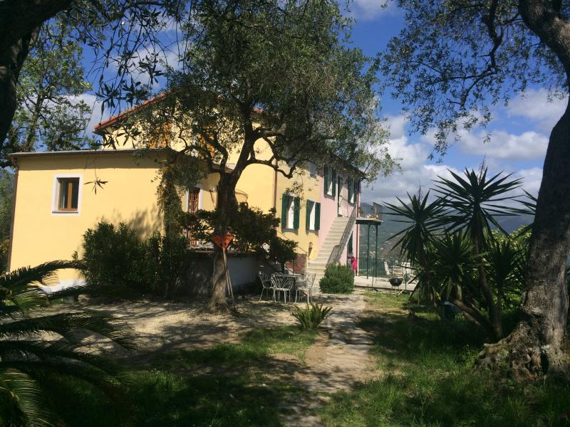 Les Oliviers, holiday rental in San Lorenzo della Costa