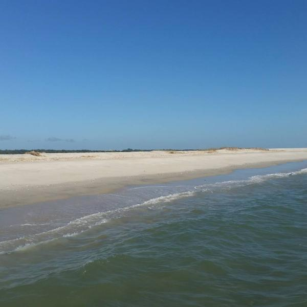 Carrot Island-South shore