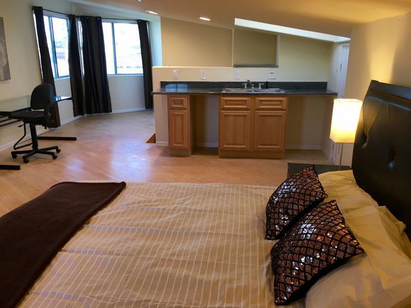 Bedroom #6 - queen bed, bamboo floors, skylight and wetbar