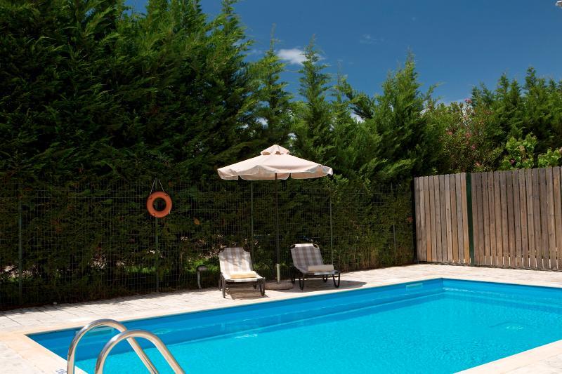 Anthemis Luxury Villas-Amazing Villa Sonia with private pool ideal for families, alquiler vacacional en Agia Varvara