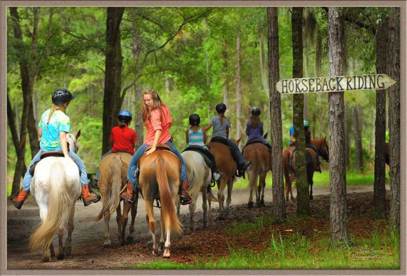 Horseback riding  15 min away