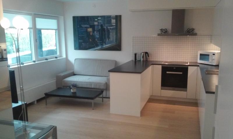 Kitchen/sitting area