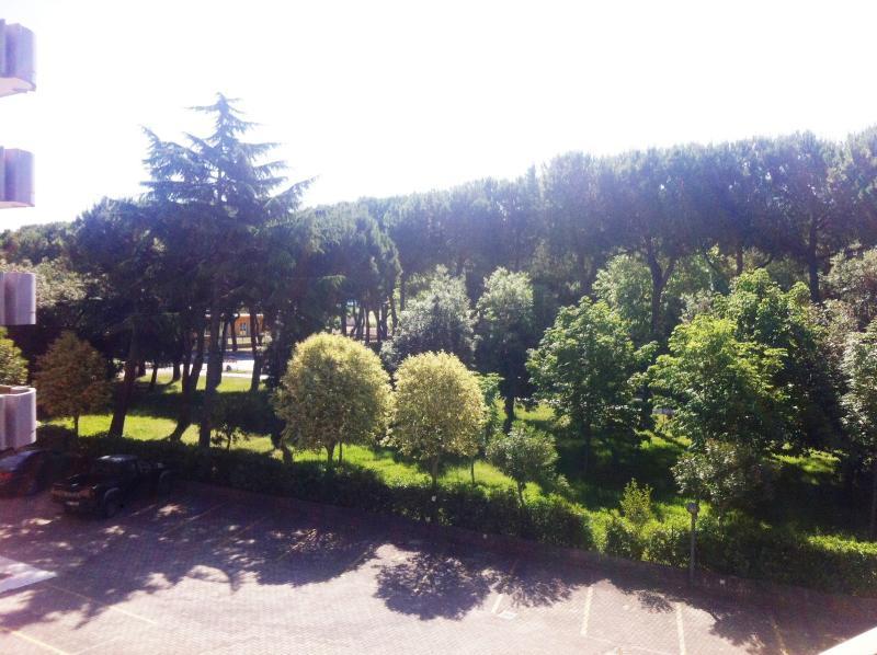 Vista pineta terrazzo