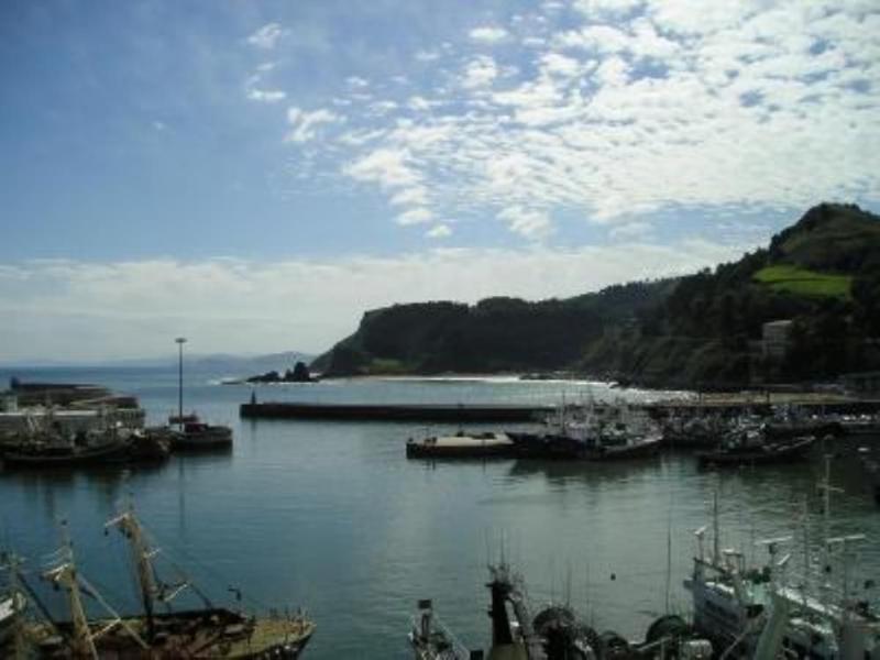 Vista desde la casa.Puerto pesquero, playas  Arrigori y Saturraran y vista al mar Cantabrico