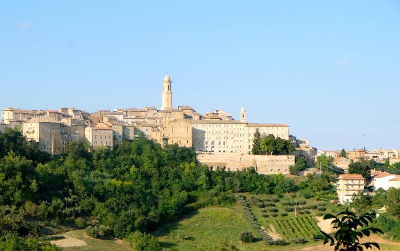 Palazzo Scarsini-  Luxury Apartment, vacation rental in Monte Giberto