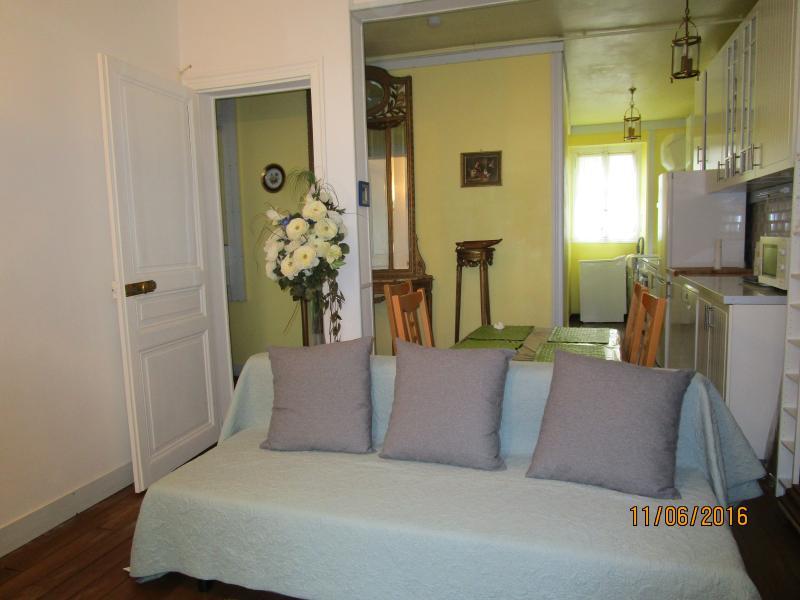 grand séjour avec télé et cuisine américaine. Appartement ensoleillé près du parc Montsouri