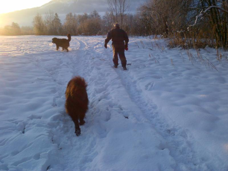 Walking in the snow on Christmas Morning.