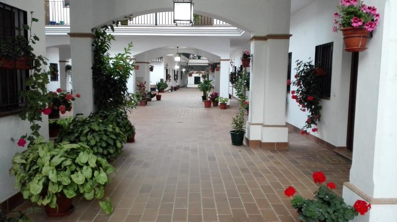 PATIO ROCIERO