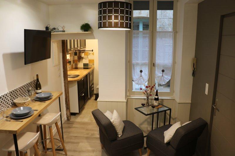 Côté-cour, studio au coeur de Beaune, holiday rental in Beaune