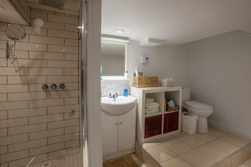 Basement bathroom exposing shower.
