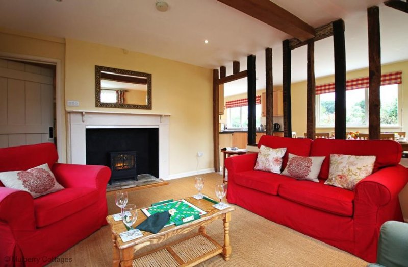 Living Room with electric fire and through to kitchen