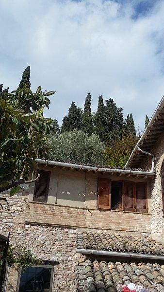 Esterno casa vista dal giardino